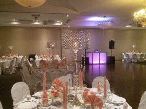 EliteDJ102 300x225 - Toronto's Best Wedding & Corporate DJ for events in Mississauga, Toronto &  GTA
